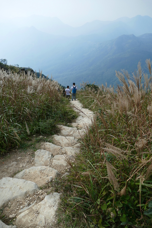 Looking down the steep trail at Lantau Peak*