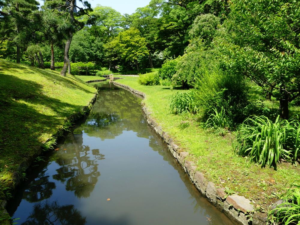 A stream through manicured lawn and beautifully trimmed trees and bushes