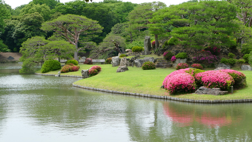 a beautiful small island in a garden pond with a lawn, trees, and azaleas